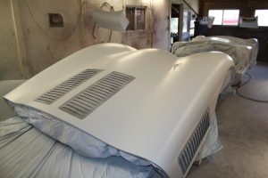 Carbon fiber bonnet in primer